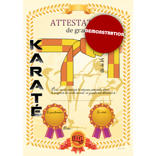 Certificazione cintura gialla arancio