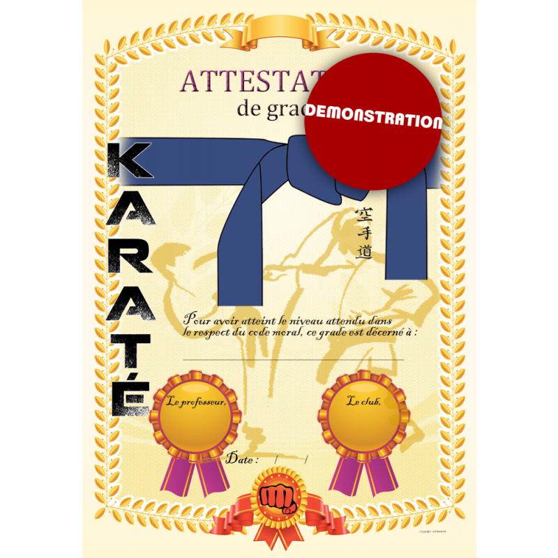 Certificación de cinturón azul