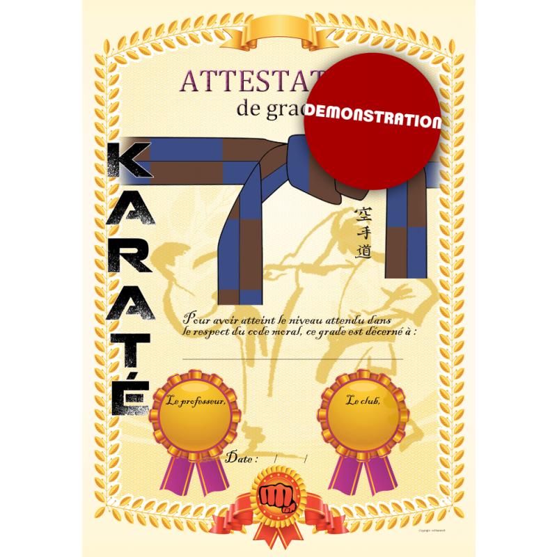 Certificación de cinturón azul marrón