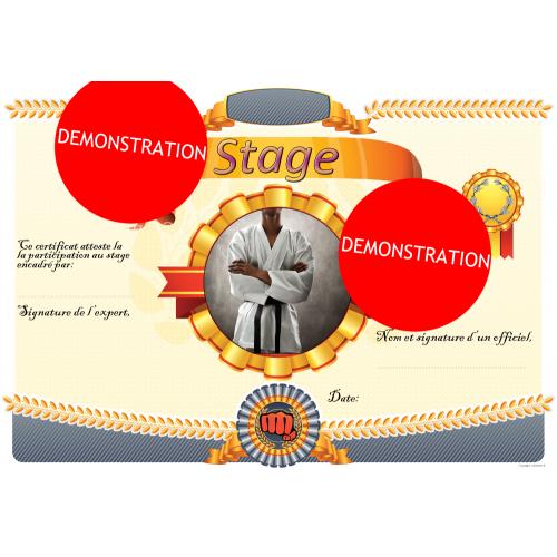Formación del certificado de curso