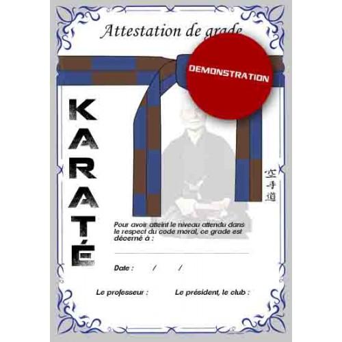 Certificazione cintura blu marrone